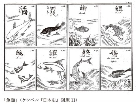 エンゲルト・ケンペル『日本史』の表紙図版